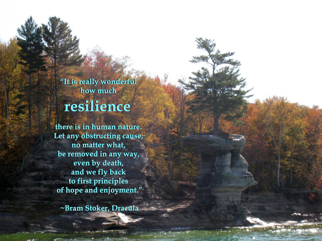 Trusting Resilience
